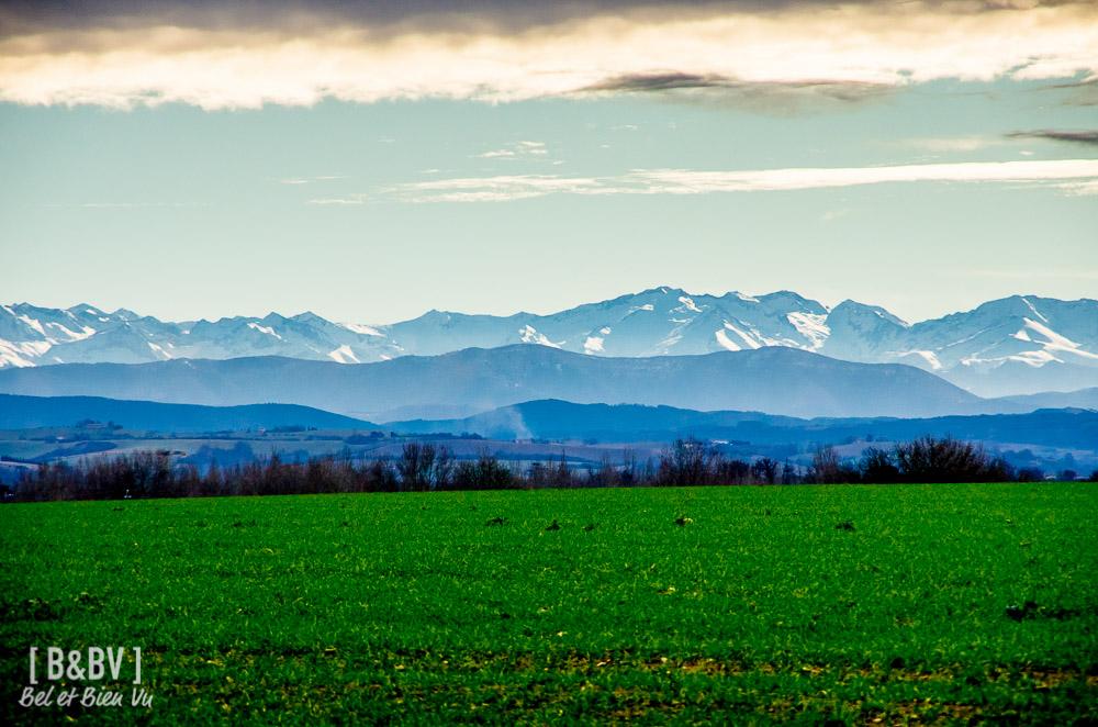 Vue des Pyrénées depuis Longages, voie Romaine